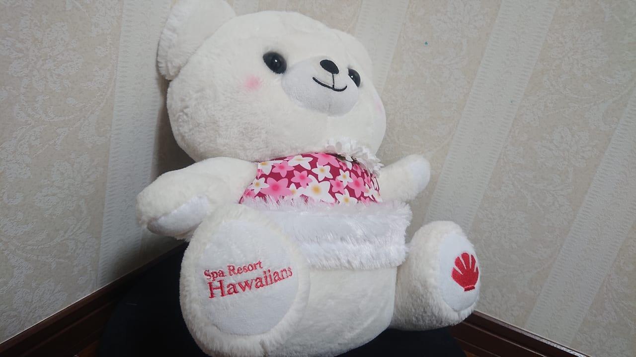 ハワイアンズベア